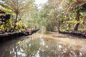 Rural Thailand