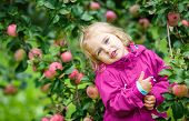 Little girl staying under apple tree in the garden
