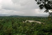 View On River Napo