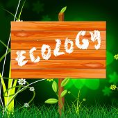 Ecology Eco Indicates Earth Day And Eco-friendly