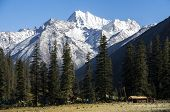 Dorphu Valley, Mountain And Habitat In Kham Tibet