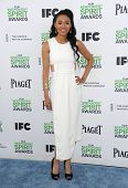 LOS ANGELES - MAR 01:  Judith Hill arrives to the Film Independent Spirit Awards 2014  on March 01, 2014 in Santa Monica, CA.