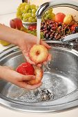 Woman's hands washing peaches in sink