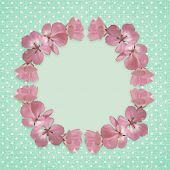 Pink Frame With Geranium Flowers