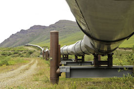 picture of pipeline  - A view coming up from under the oil pipeline in Alaska - JPG