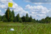 Golf ball grass flag