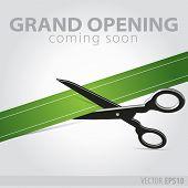Shop Grand Opening - Cutting Green Ribbon