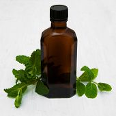 Bottle Of Mint Oil And Fresh Mint