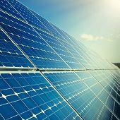 Solar Panels With Sunlight