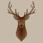 image of deer head  - Deer head - JPG