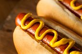 foto of wiener dog  - Barbecue Grilled Hot Dog with Yellow Mustard - JPG