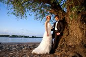 pic of auburn  - Wedding couple smiling and happy below the tree to the river bank on a beautiful sunny day - JPG