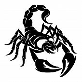 foto of scorpion  - Vector sign isolated on white background - JPG
