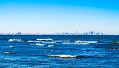 stock photo of horizon  - Waves breaking on blue water on Lake Ontario with a few ducks floating in foreground against clear blue sky with extended Toronto city skyline across horizon - JPG