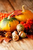 foto of fall leaves  - Harvested pumpkins with fall leaves - JPG