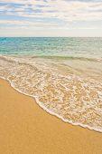 Beach Swell