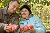 Middle-aged man and woman stretch out their hands with apples