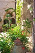Italian Square Decorated With Plants And Trellises