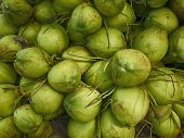 Green Coconut Fruit,  Texture And Background Coconut Fruits poster
