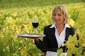 Blond waitress in field holding trey of wine