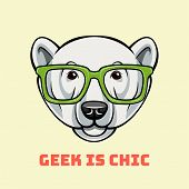 Polar Bear Face In Nerdy Glasses. Geek Is Chic. Vector Illustration Isolated On White Background poster