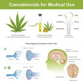 Research Has Found That Cannabis Indica Plant Can Have The Following Effects.cannabis It Is Plant Af poster