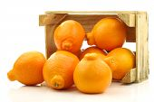 fresh and colorful  Minneola tangelo fruit in a wooden crate