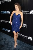 LOS ANGELES - NOV 1: Melina Kanakaredes at the CSI NY 100th episode party at the Edison Downtown, Lo