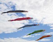 Fish kites