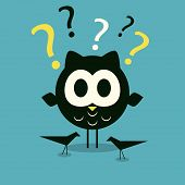 Curios owl background