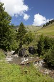 Stream In The Swiss Mountains During Summer