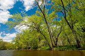 Rum River, Spring