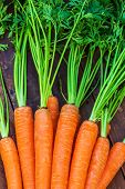 Raw Carrots  On Rdark Wooden Background. Close Up. A Bunch Of Carrots poster
