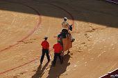Picador In The Bullfighting Arena In Spain