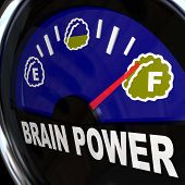 A vehicle type gauge measures your amount of creativity, intelligence, agility, and mental capacity