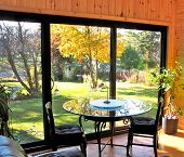 Fall Day In Sunroom