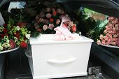 pic of hearse  - A white coffin covered with flowers in a grey hearse - JPG