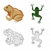 Vector Illustration Of Wildlife And Bog Symbol. Set Of Wildlife And Reptile Vector Icon For Stock. poster