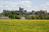 Castillo de Windsor y Prado de Buttercup