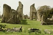 Glastonbury Abbey, Glastonbury, England