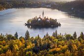 Colorful Landscape View Of And Island And Lake Bled With Colorfu Autumn Foliage, Slovenia poster