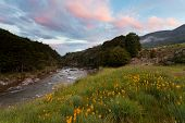 Sunset in Cobb valley of Kahurangi NP, New Zealand