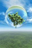 Leafy Plant In Glass Bubble
