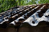 Old Slate Roof With Dirt, Lichen And Moss At Wavy Surface. Wavy Roof Slates Covers The Barn. Natural poster