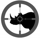 Rhino Endangered