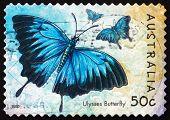 Estampilla Australia 2003 Ulises mariposa