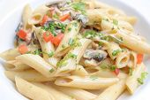 picture of italian food  - photograph of penne pasta food on plate ready for serve - JPG