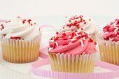 Freshly Baked Cupcake
