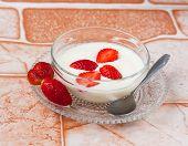 Yogurt With Fresh Organic Strawberries