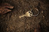 Metal key lost and found on soil ground.